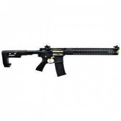 APS ASR118 RS-2 BOAR TACTICAL
